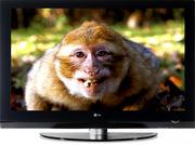 Ремонт LCD TV,  Lcd мониторов,  Dvd плееров,  Свч,  утюгов,  фенов,  кофемаш
