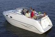 Продажа катера Stingray 240 CS